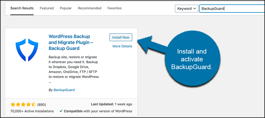 Install and activate backupguard