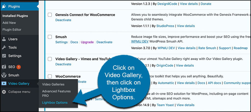 Click on video gallery then lightbox options
