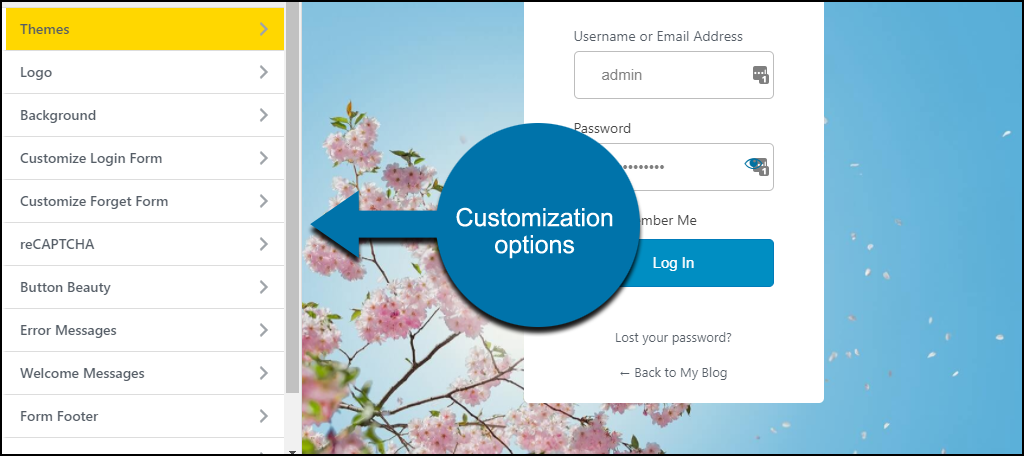 LoginPress WordPress plugin customization options