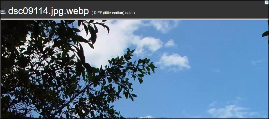 WebP Converter for Media plugin WebP image on site