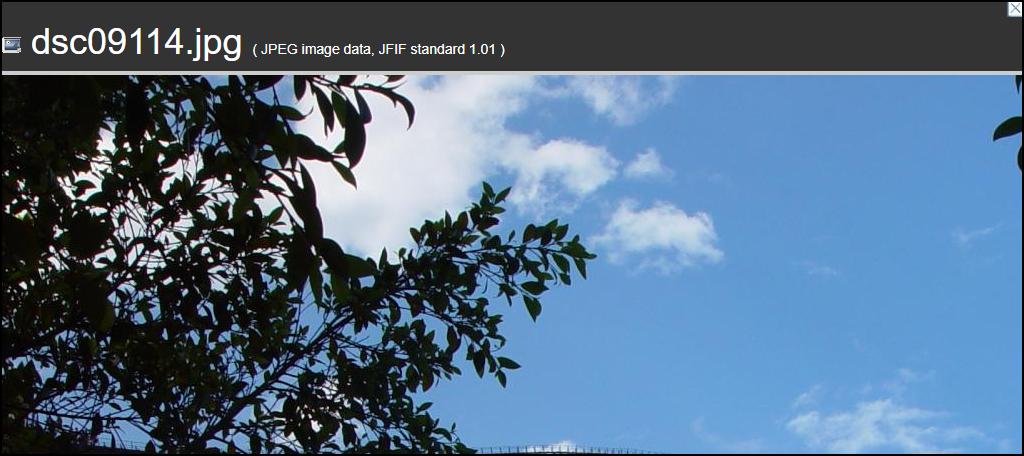 WebP Converter for Media plugin original image on site