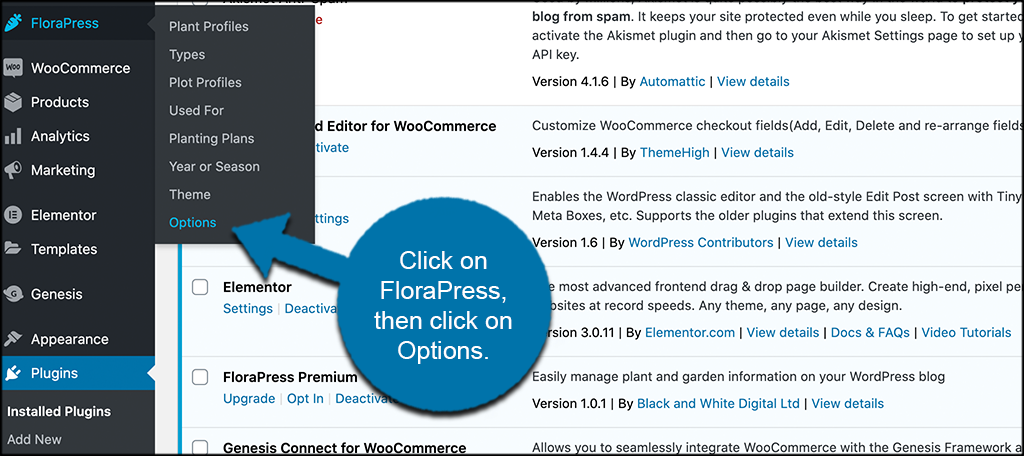 Click florapress then options