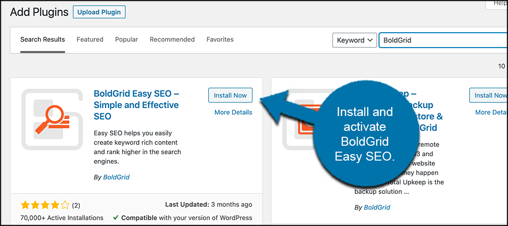 INstall and activate BoldGrid Easy SEO