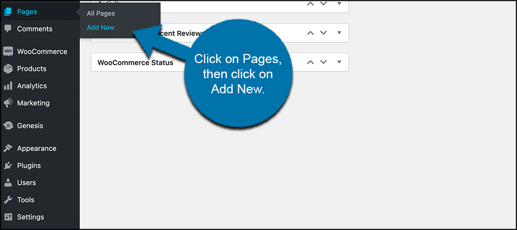 Click pages then add new