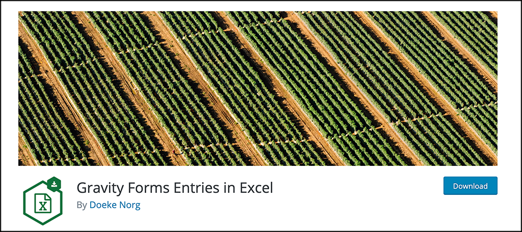 Gravity Forms Entries for Excel