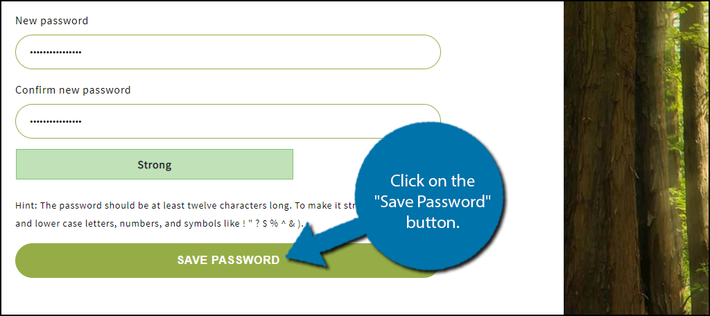 Save Password