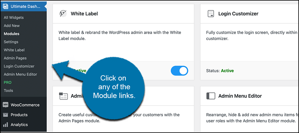 Click available module links