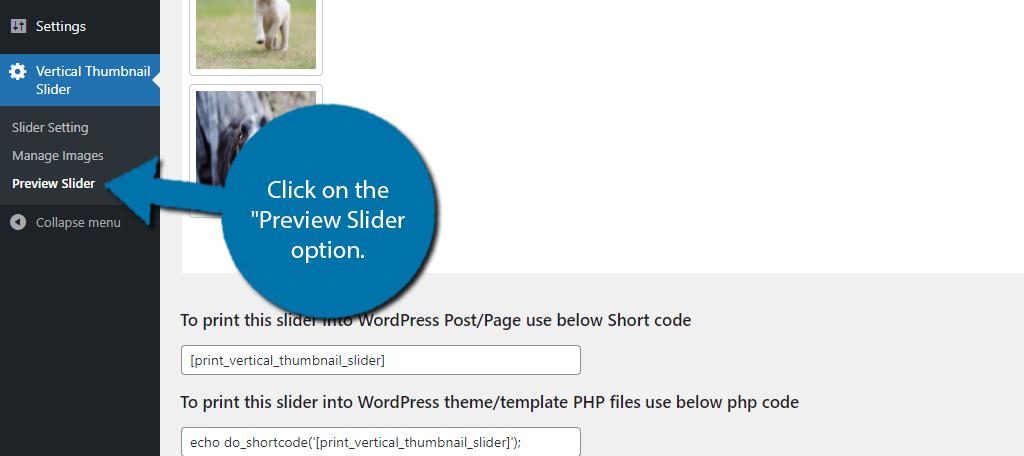 Preview Slider